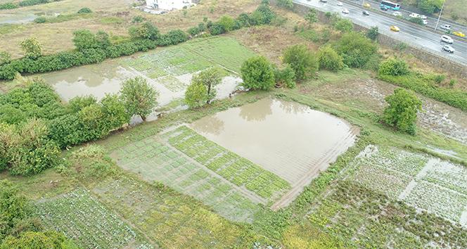 Ataşehir Belediyesinden su baskınlarıyla ilgili açıklama