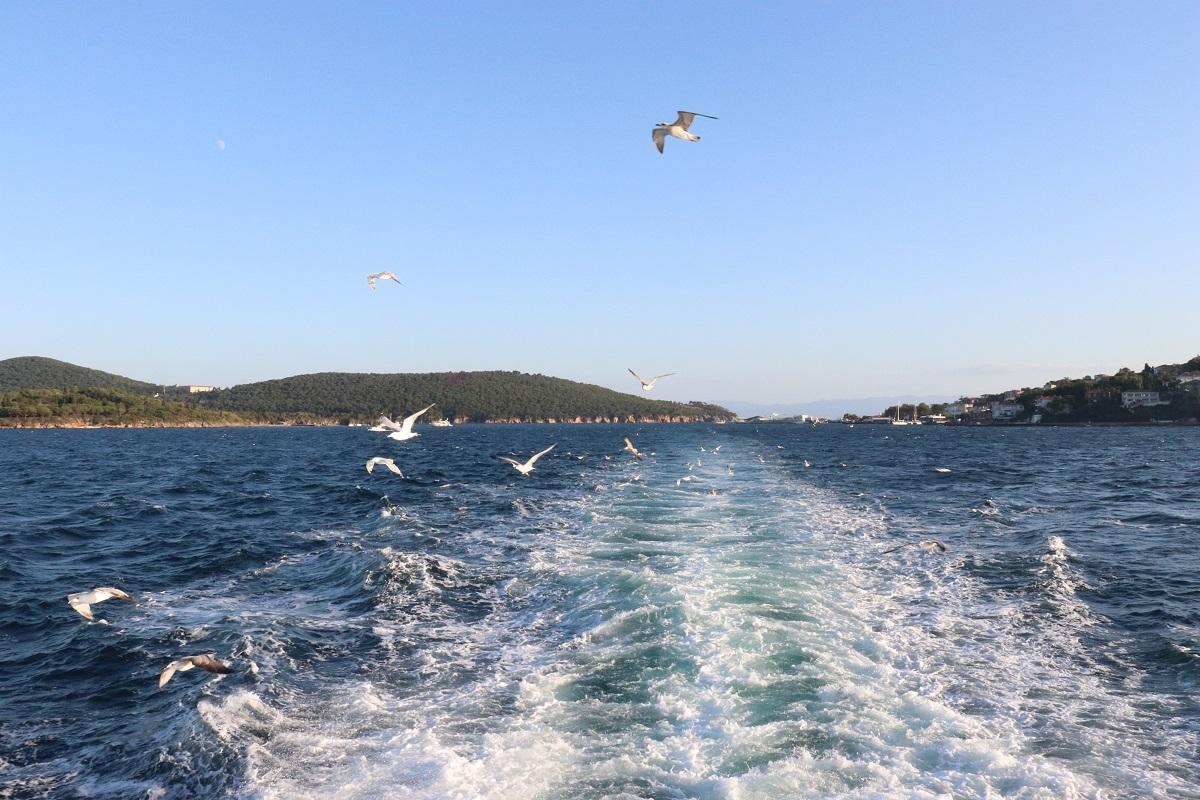 Bostancı'dan Adalara 24 Saat Kesintisiz Vapur Seferleri Başlatılıyor