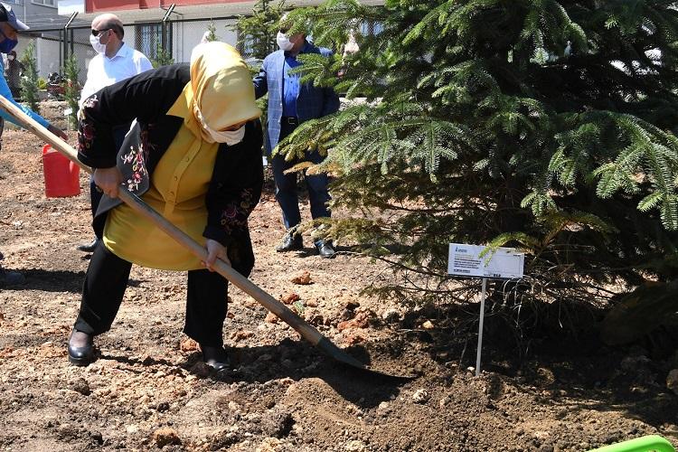 400 Sağlıkçı Annenin İsmi Sahra Hastanesi'nin Bahçesinde Yeşerecek