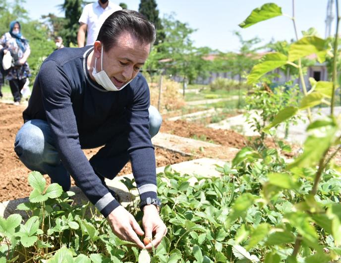 İhtiyaç Sahiplerine Organik Sebze Meyve Şöleni