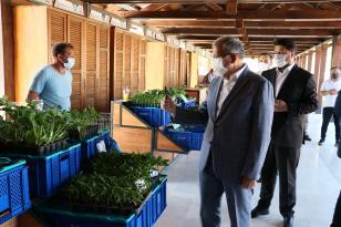 Beykoz Köy Pazarı Kapılarını Açtı